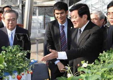 Chủ tịch nước thăm Nhật Bản: Thúc đẩy hợp tác nông nghiệp