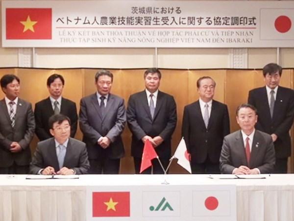 Việt-Nhật hợp tác đào tạo thực tập sinh kỹ năng nông nhiệp