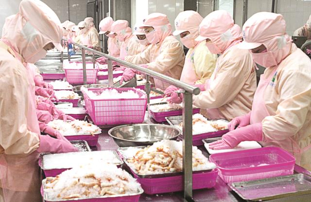 45 nam nữ chế biến thủy sản tại Hokkaido tháng 8/2014