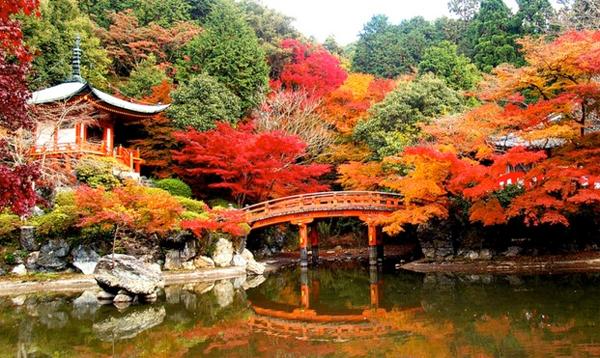 Kinh nghiệm chi tiêu tiết kiệm hợp lý khi sống ở Nhật Bản