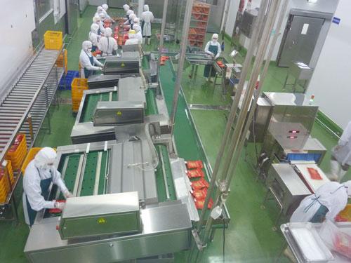 36 Nam/Nữ chế biến thực phẩm 01 Năm tại Hiroshima tháng 04/2015