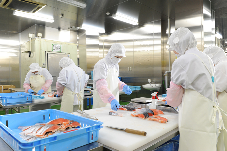 9 Nữ và 6 Nam làm chế biến thực phẩm tại Hiroshima tháng 5/2015
