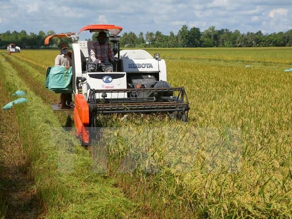Doanh nghiêp Nhật Bản tìm cơ hội đầu tư vào nông nghiệp tỉnh Hà Nam
