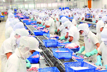 Tuyển 20 nữ làm chế biến thủy sản tại Aomori tháng 10/2015