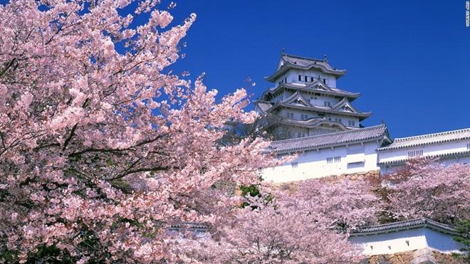 Ngất ngây với những cảnh đẹp tựa cõi tiên tại Nhật Bản