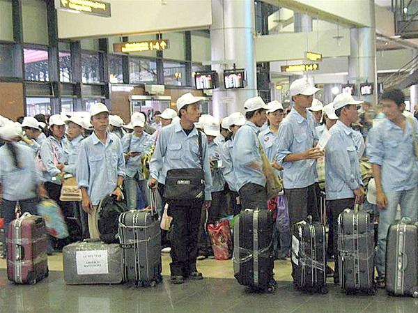 Buồn thay cảnh đón tết nơi xứ người của thực tập sinh Nhật Bản