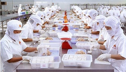 Tuyển 18 nam/nữ làm chế biến thực phẩm tại Kagoshima lương cao