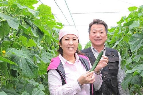 Tuyển nữ xuất khẩu lao động làm trồng rau tại Kumamoto tháng 03/2017