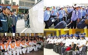 TP. Hồ Chí Minh: Khuyến khích, hỗ trợ người dân đi xuất khẩu lao động Nhật Bản