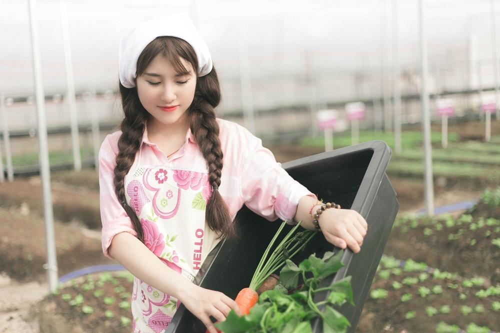 5 lý do đơn hàng nông nghiệp Aichi thu hút người lao động