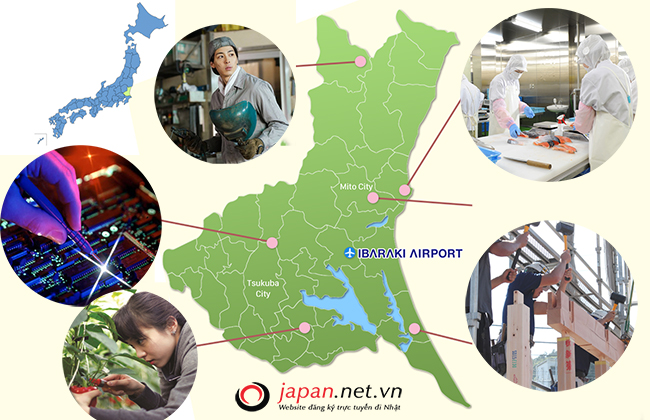 Làm thế nào để đăng kí đi xuất khẩu lao động tại Ibaraki Nhật Bản