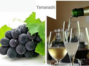Yamanashi - Thiên đường của ngành thực phẩm