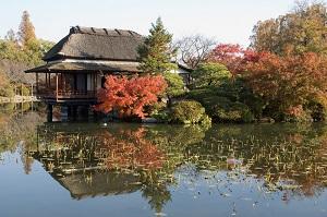 XKLĐ Nhật tại Saga: Những điều không thể không nắm rõ