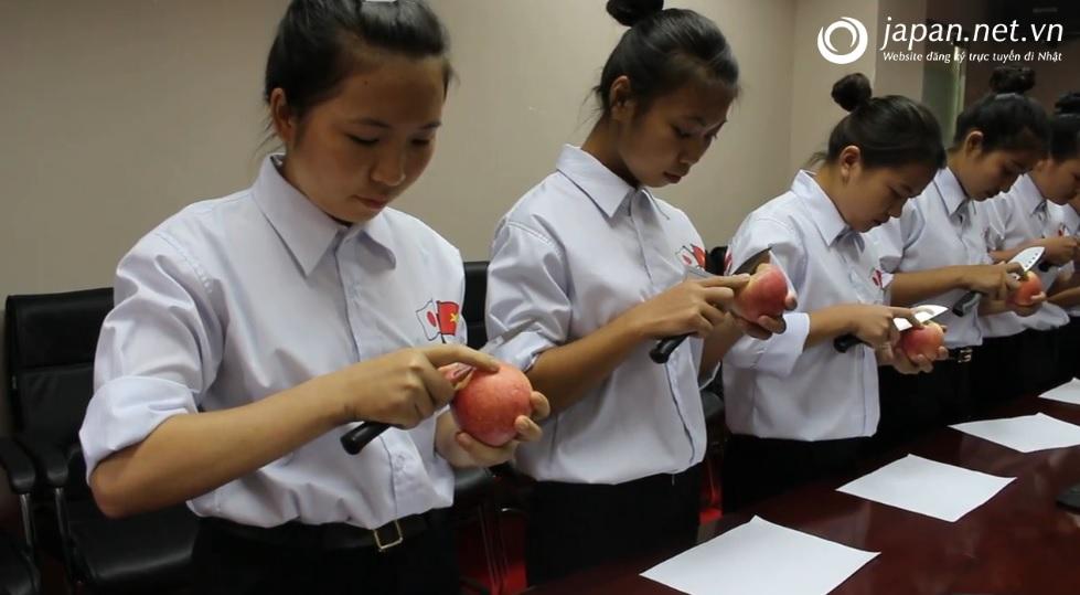Phỏng vấn thi tuyển đơn hàng chế biến thực phẩm làm việc tại Nhật
