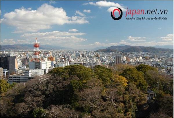 Tỉnh Wakayama - Người đẹp ngủ quên của Nhật Bản