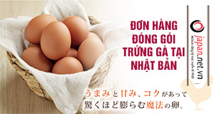 Tuyển gấp 12 nữ đơn hàng đóng gói trứng tại Nhật chi phí thấp