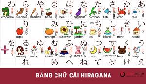 Chia sẻ 5 cách giúp thực tập sinh Việt học thuộc nhanh bảng chữ cái tiếng nhật Hiragana