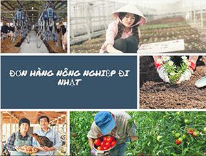 Xuất khẩu lao động Nhật Bản đơn hàng nông nghiệp tháng 06/2018