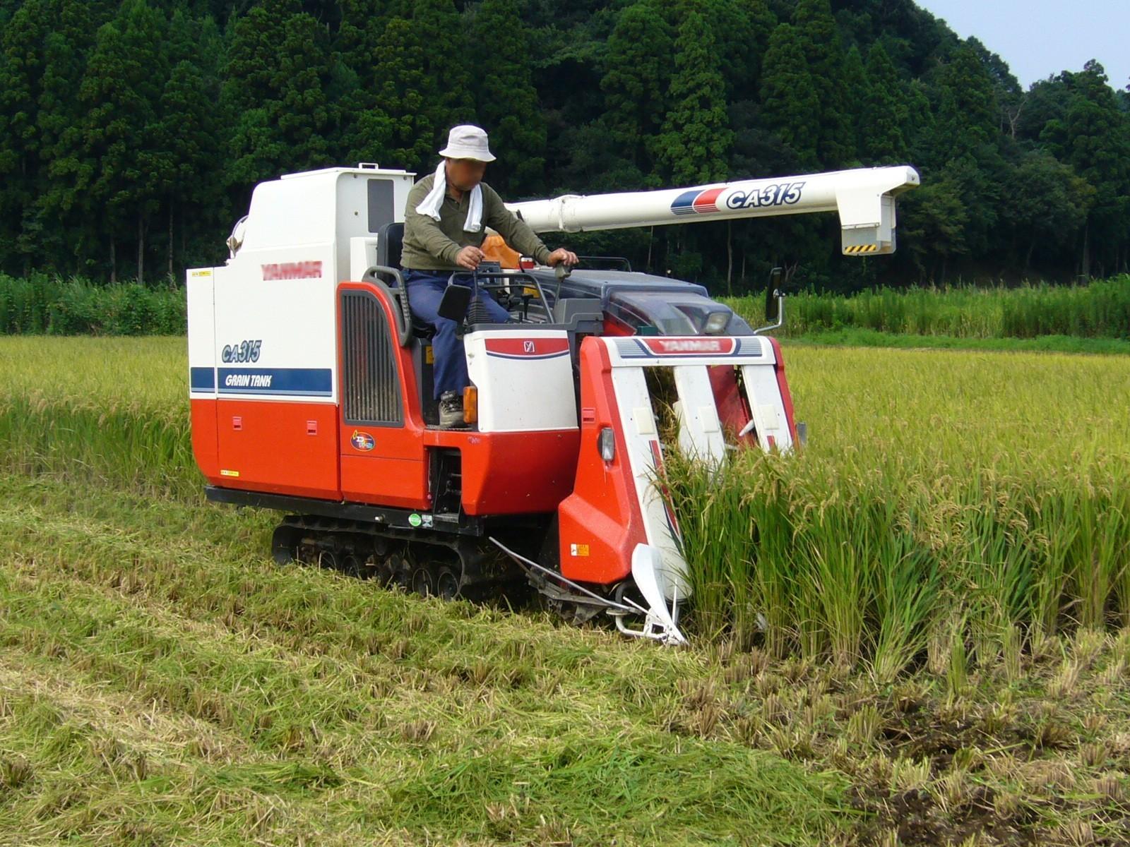 nền nông nghiệp Nhật Bản