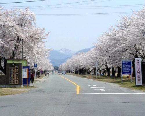 Thông tin sửa đổi về VISA lưu trú Nhật Bản thay đổi gần đây
