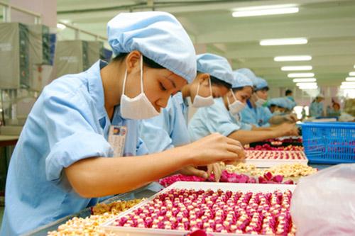 15 nữ chế biến thực phẩm tại Hokkaido tháng 7/2014