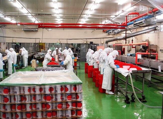 15 Nam chế biến thực phẩm tại Fukuishima không cần kinh nghiệm