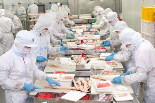 Hỏi đáp đi XKLĐ Nhật làm ngành chế biến thực phẩm?