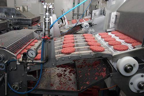 9 Nam chế biến thực phẩm tại Fukushima tháng 8/2015