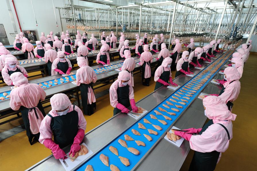 Tuyển 20 Nam/Nữ làm chế biến thực phẩm tại Nhật Bản tháng 01/2015