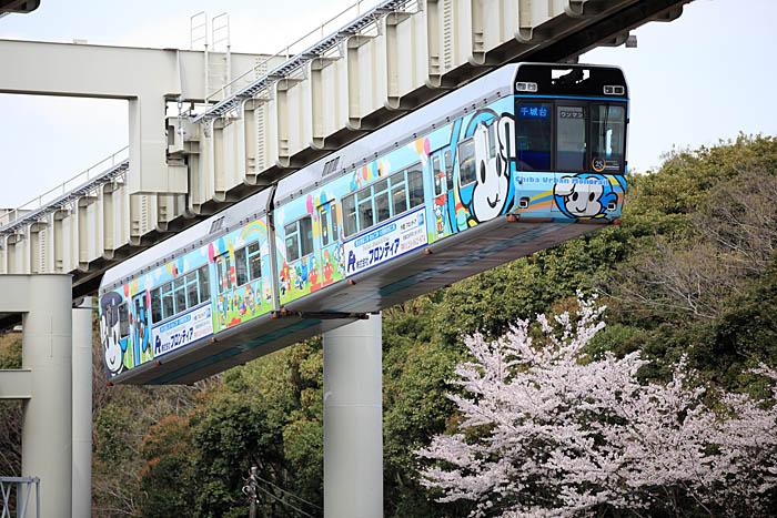 Tỉnh Chiba Nhật Bản và những điều có thể bạn chưa biết