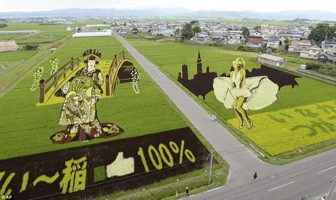 Đôi nét về tỉnh Aomori Nhật Bản, chốn thần tiên của xứ phù tang