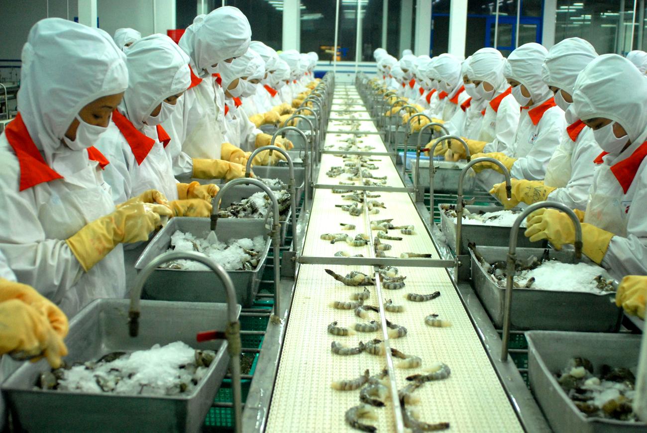Tuyển gấp 241 lao động đi xuất khẩu Nhật Bản tại tỉnh Thái Bình