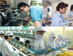 Ở Thanh Hóa nên chọn xuất khẩu lao động nước nào?
