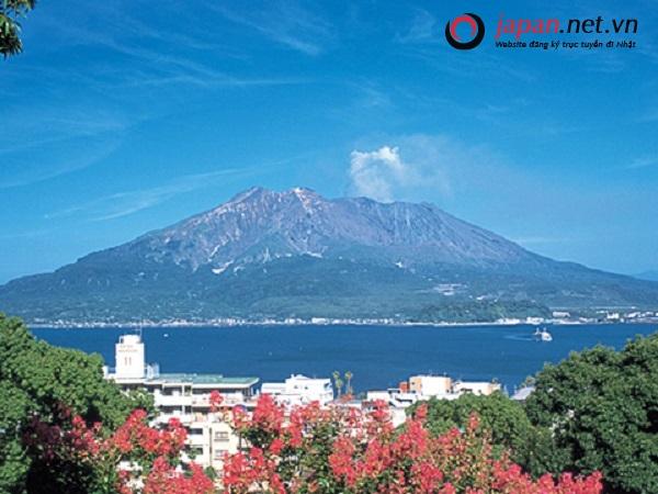 Kagoshima - Nông nghiệp là thế mạnh của tỉnh