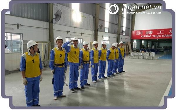 7 nhóm ngành nghề phổ biến đi xuất khẩu lao động Nhật Bản