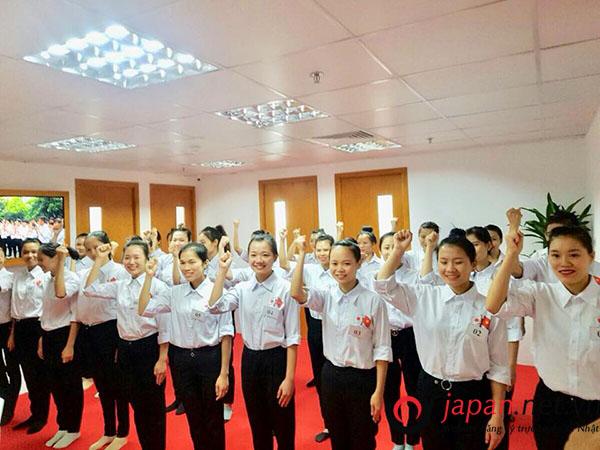 Thi tuyển đơn hàng nông nghiệp thu hoạch dâu tây tại TTC Việt Nam