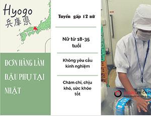 Cơ hội cho 12 lao động nữ đăng kí đơn hàng làm đậu phụ tại Hyogo Nhật Bản