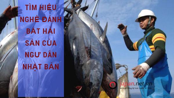 Tìm hiểu nghề đánh bắt hải sản của Nhật Bản