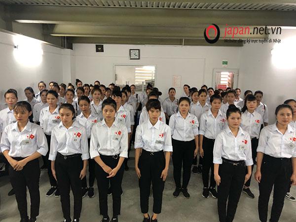 Thi tuyển đơn hàng sơ chế rau củ tại trung tâm 3 TTC Việt Nam