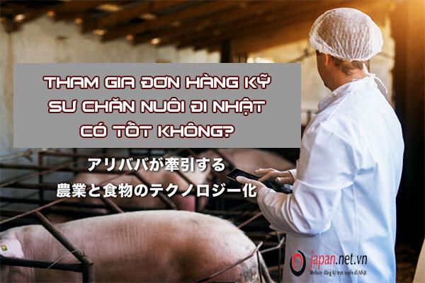 Tham gia đơn hàng kỹ sư chăn nuôi đi Nhật có tốt không?