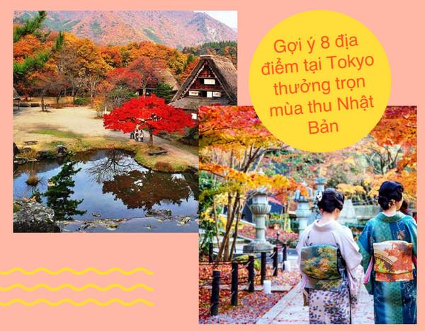 Gợi ý 8 địa điểm tại Tokyo thưởng trọn mùa thu Nhật Bản