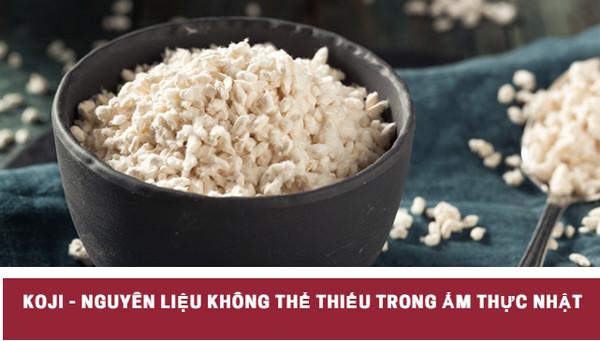 Koji là gì? Nguyên liệu không thể thiếu trong ẩm thực Nhật