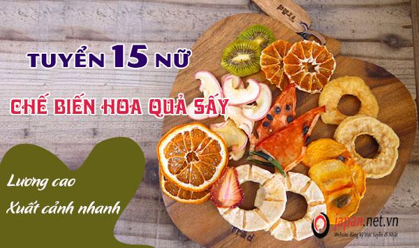 Tuyển 15 nữ đơn hàng 1 năm hoa quả sấy tại Aichi, XÍ NGHIỆP TỐT, TĂNG CA NHIỀU