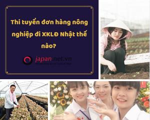 Thi tuyển đơn hàng nông nghiệp đi XKLĐ Nhật thế nào?