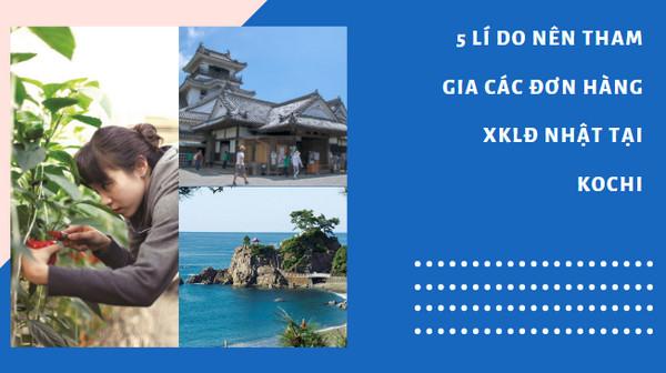 5 Lí do nên tham gia các đơn hàng XKLĐ Nhật tại Kochi