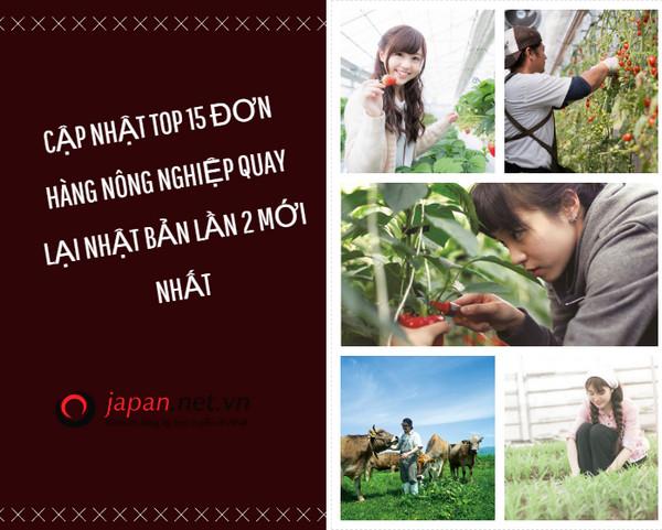 Cập nhật TOP 15 đơn hàng nông nghiệp quay lại Nhật Bản lần 2 mới nhất