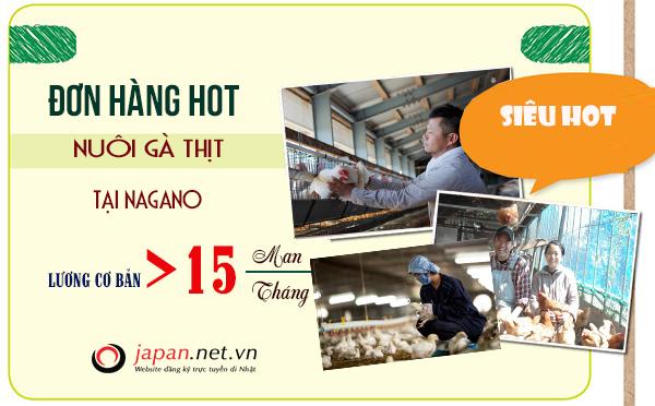 Tuyển 30 Nam/ nữ đơn hàng nuôi gà thịt tại Nagano chi phí thấp- xuất cảnh nhanh