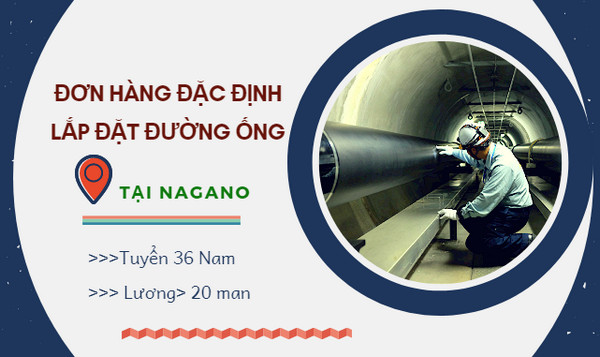 Cần Tuyển 36 Nam đơn hàng đặc định lắp đặt đường ống tại Nagano Nhật Bản