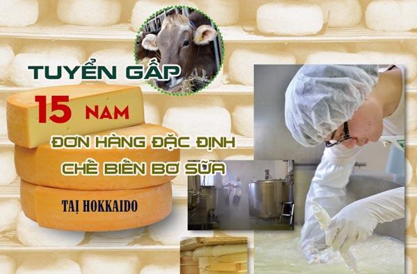 CẦN GẤP 15 Nam đơn hàng đặc định sản xuất bơ sữa taị Hokkaido, lương > 50 triệu