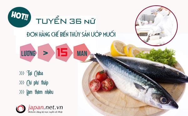 ĐƠN VIP: Tuyển 36 Nữ đơn hàng chế biến thủy sản ướp muối, lương 40 triệu/ tháng